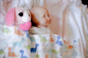 PS_MG_3580 (1 of 1)