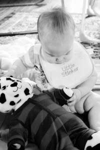 PS_MG_5951 (1 of 1)