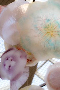 PS_MG_6627 (1 of 1)